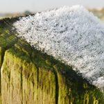 Eiskristalle verzieren einen Weidezaunpfosten