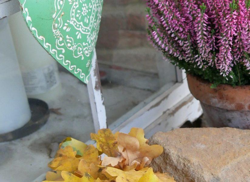 Herbstdeko Erkika Eichenlaub
